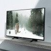 Sony LED TV 49XE8005 49 (124cm) Smart Android, UHD 4K