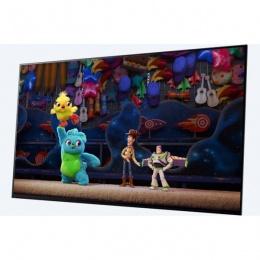 Sony OLED 4K TV 55 AF9