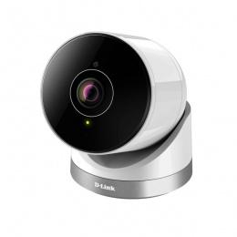 D-link - Full HD 180-Degree Outdoor Wi-Fi Camera - DCS-2670L