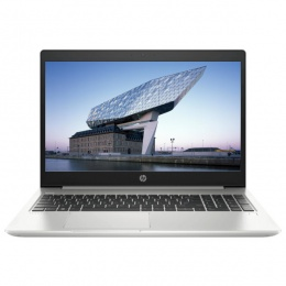 Laptop HP ProBook 455R G6 (5JC17AV)